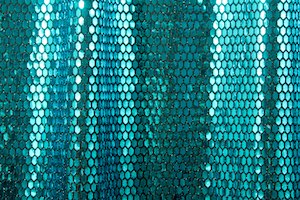 Stretch Sequins(Black/Teal)