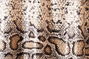 Non-Stretch Sequins (Snake prints)