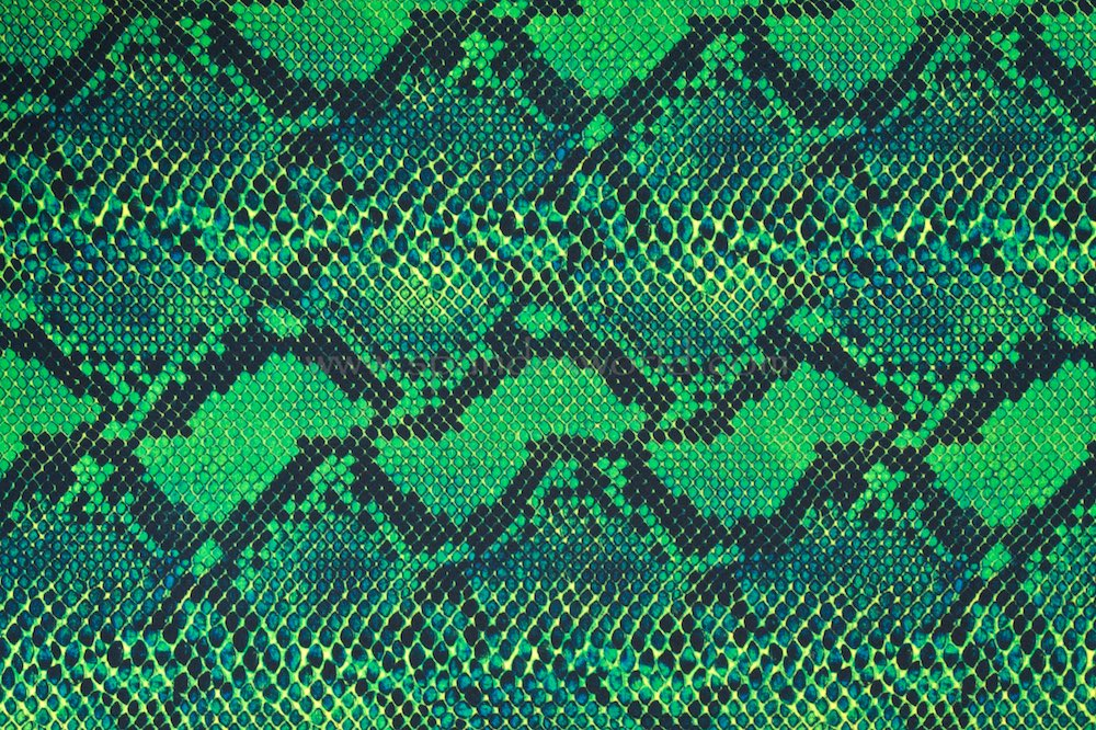 Snake Prints (Green/Black)