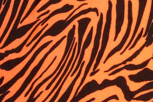 Animal Print Stretch Velvet (Neon Orange/Black)