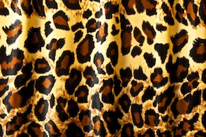 Animal Print Stretch velvet (Leopard print)