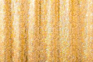 Stretch Sequins (Nude/Gold Holo)