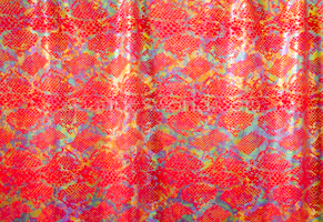 Snake Prints Hologram (Red/Multi)