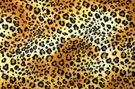 Animal Print (Leopard print on poly spandex)