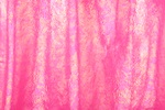 Animal Prints Hologram (Hot Pink)
